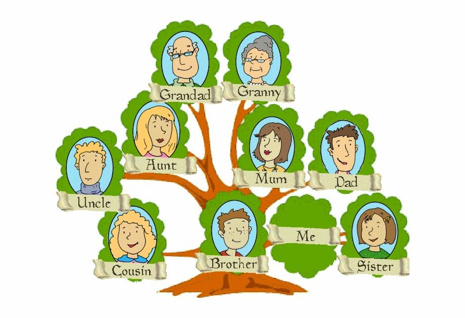 Từ vựng thành viên trong gia đình